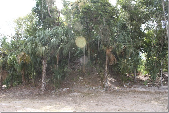 Mayan photos